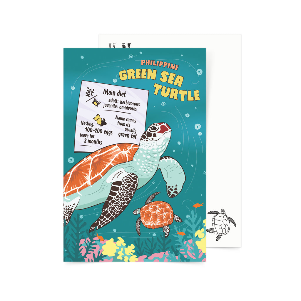 green filipino sea turtle animal postcrossing pinoy mail children game