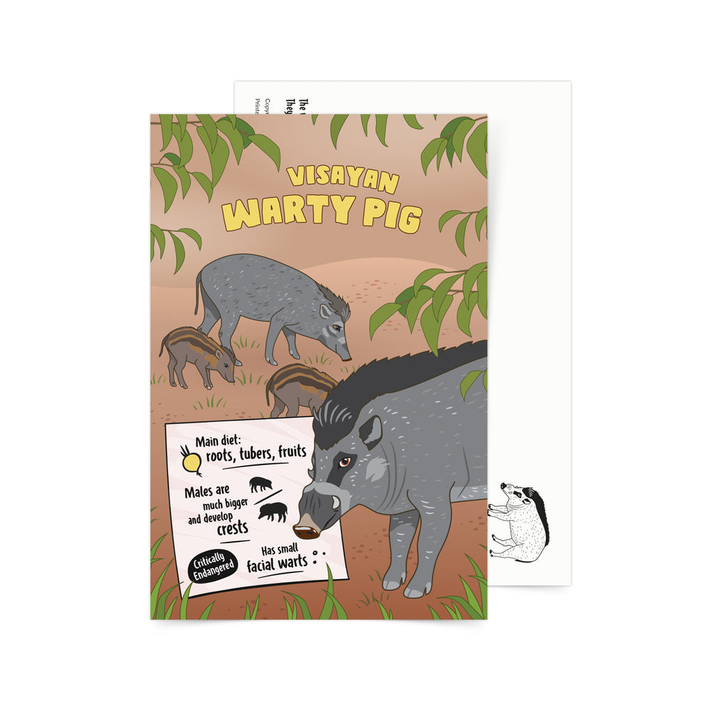 Facts About Visayan Warty Pig Postcard
