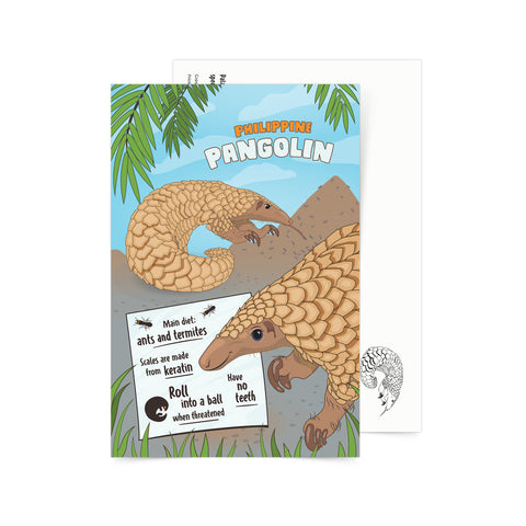 «Facts about Philippine Pangolin» Postcard  Philippine