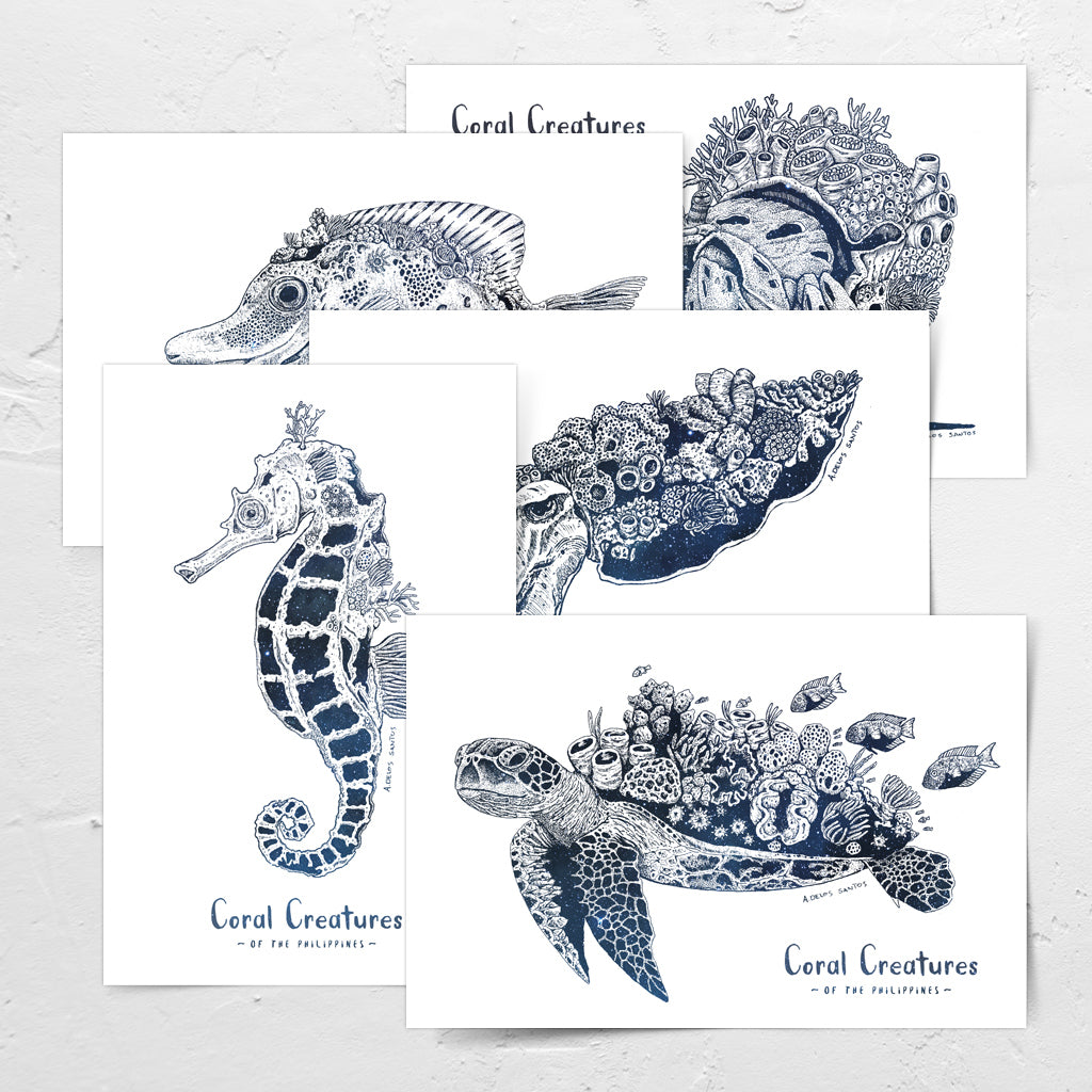 ink pen drawing marine animals creatures art Filipino cuttlefish seahorse green sea turtle hermit crab fish coral detail postcrossing snailmail Philippines underwater pinoy