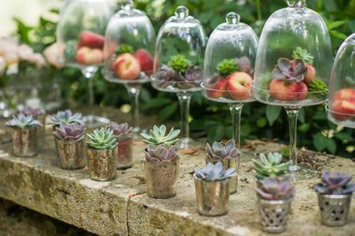 Adorable & Affordable Fruit Centerpieces