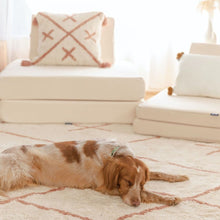 Dog Asleep on Oh Happy Home Pet Friendly Cotton Berber Toffee Rug