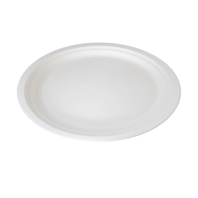 Oval Sugarcane Plate - 12.2 x 9.4""