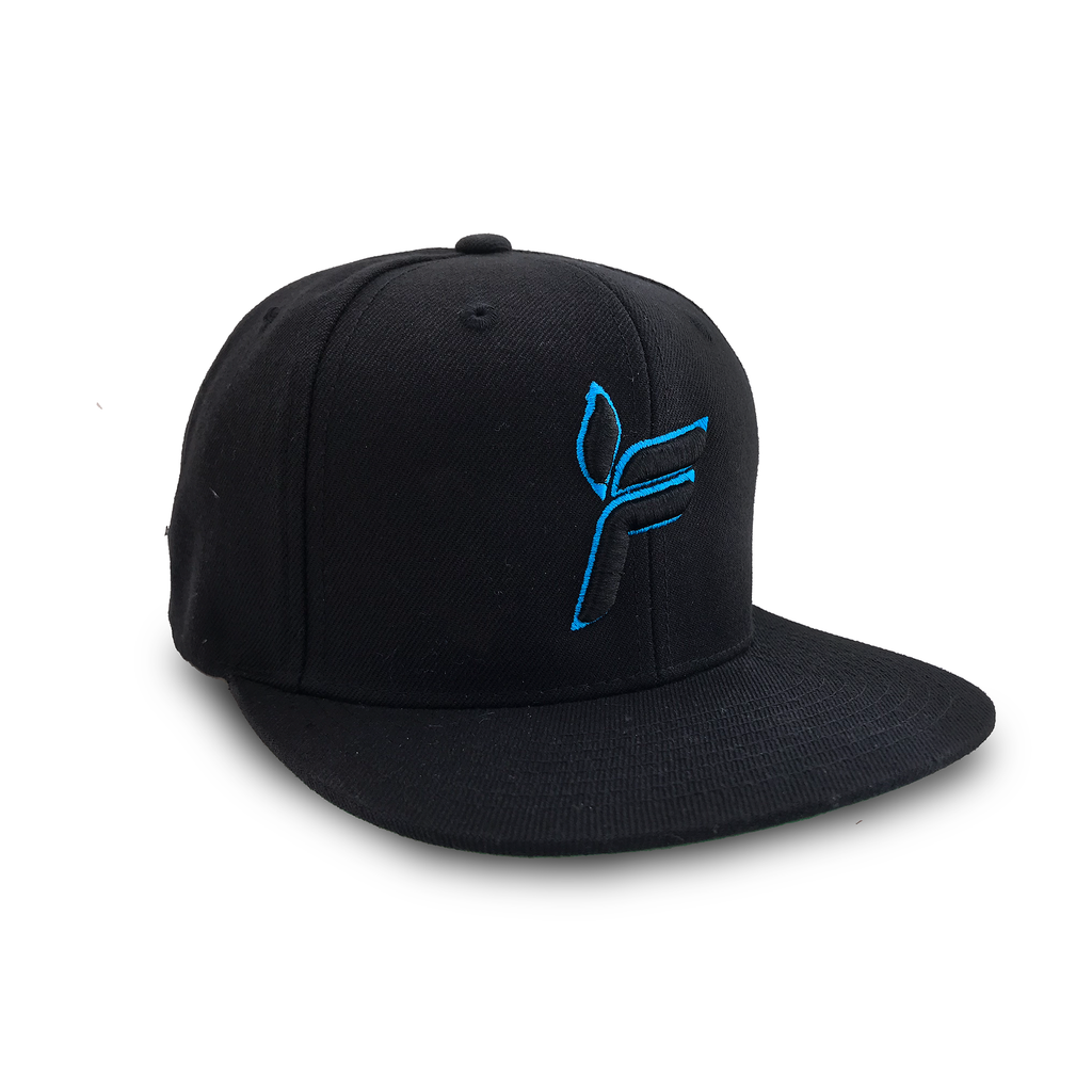 LIMITED EDITION Ferry Corsten Snap Back