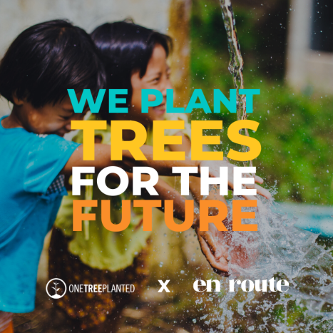 We plant trees for the future
