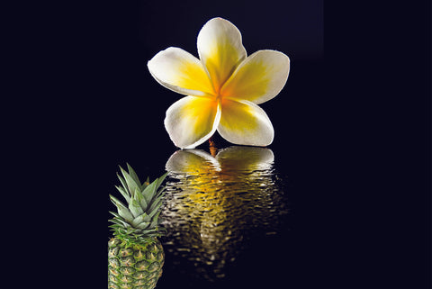 Frangipani and Pineapple