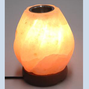 Electric Salt Lamp Oil Warmer