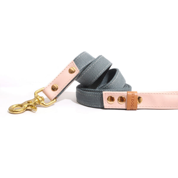 HEY DOG Co. | Pink Candy Leash