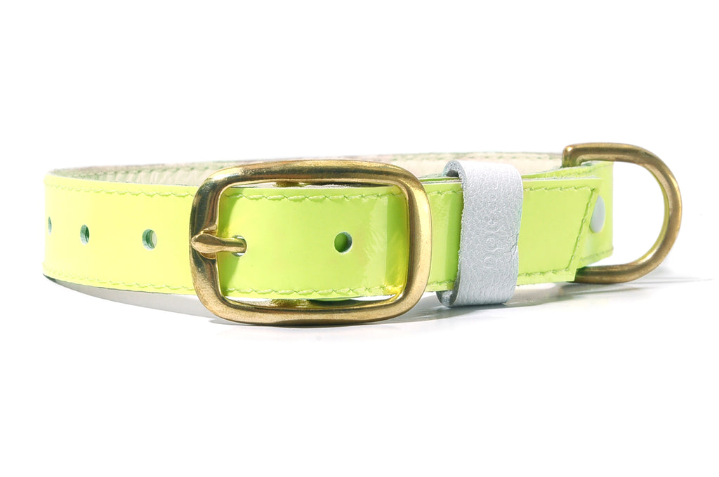 HEY DOG Co. NEW ARRIVAL | LIMEON Collar
