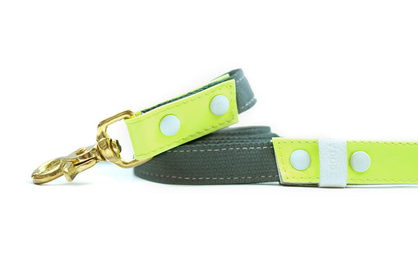HEY DOG Co. NEW ARRIVAL | LIMEON Leash