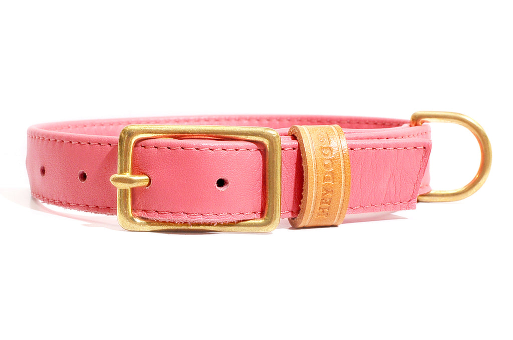HEY DOG Co. | Coral Collar