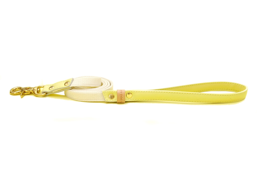 HEY DOG Co. | Canary Bon Bon Leash
