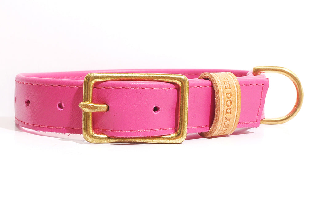 HEY DOG Co. | Pinky Dinky Collar