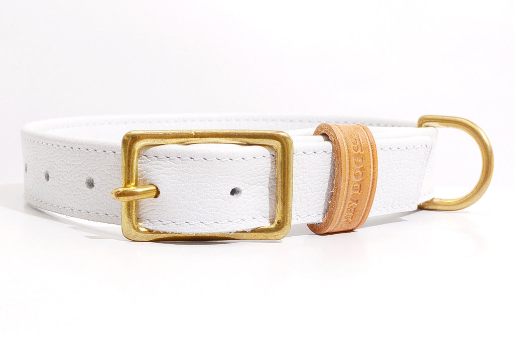 HEY DOG Co.| Pure White Collar