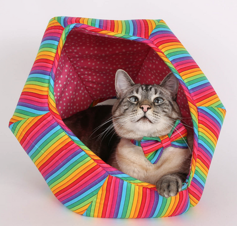 The Cat Ball | Rainbow Kitty Bed