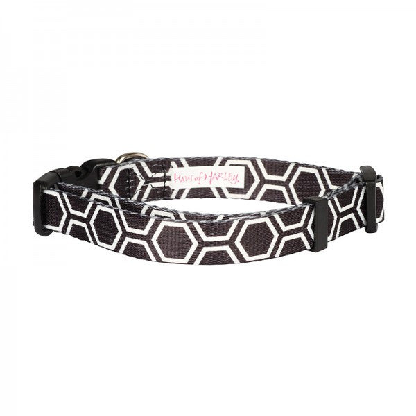HAUS OF HARLEY | Hive Collar in Black