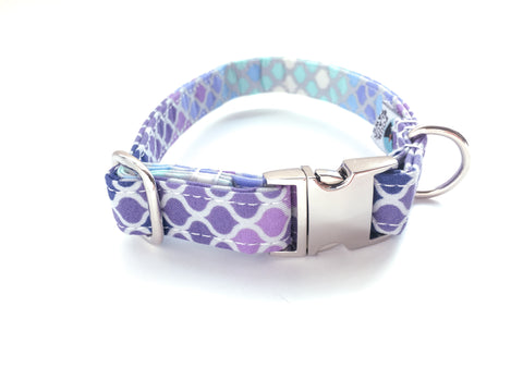 4 Black Paws | Mermaid Scale in Purple Collar