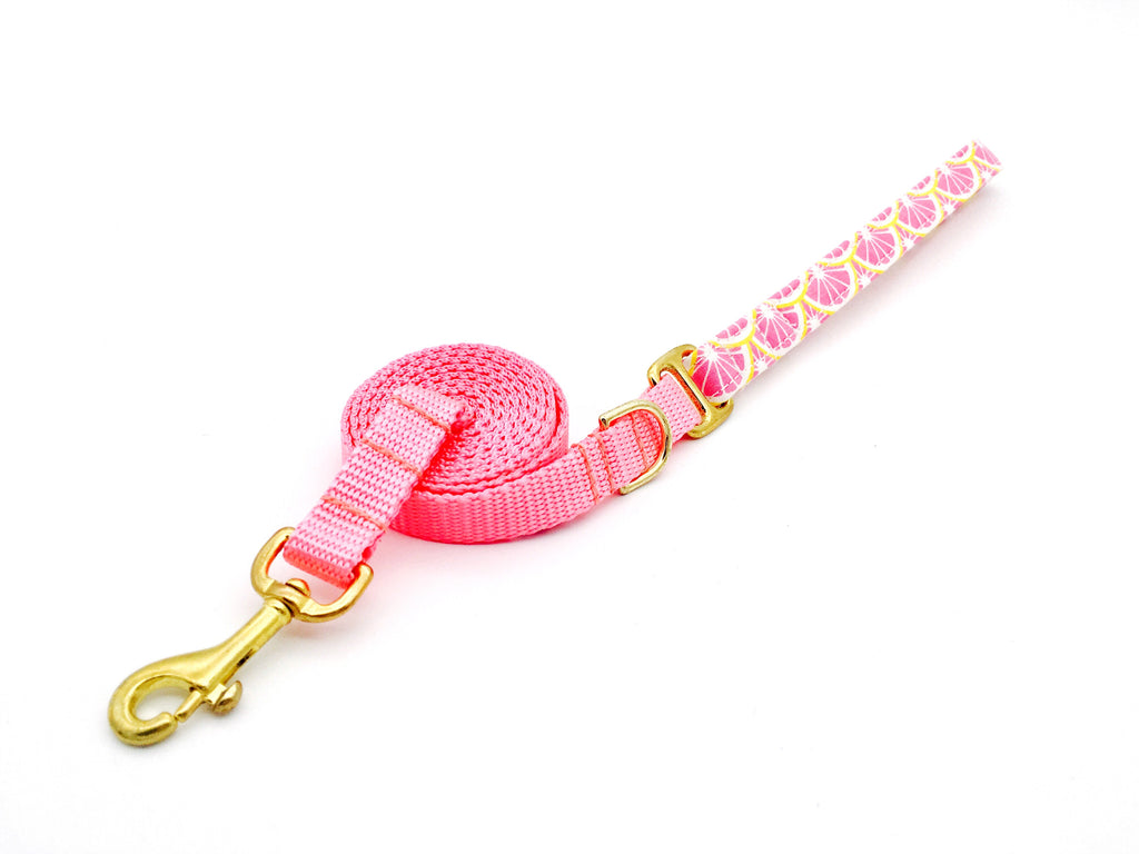 4 Black Paws | Pink Lemon Leash
