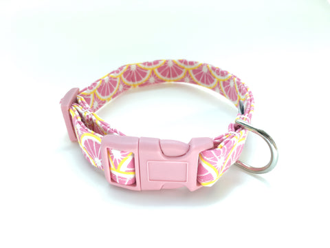 4 Black Paws | Pink Lemon Collar