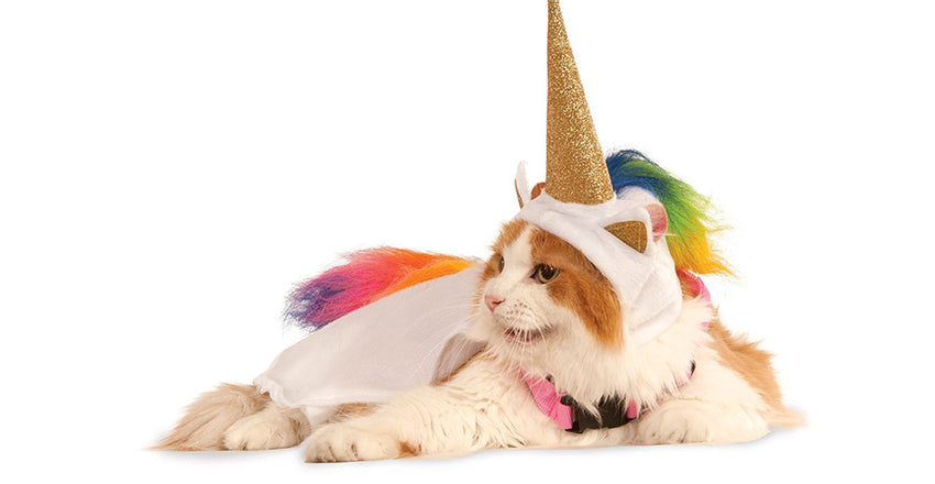 Collection of Unicorn hat for cats and DIY instructions