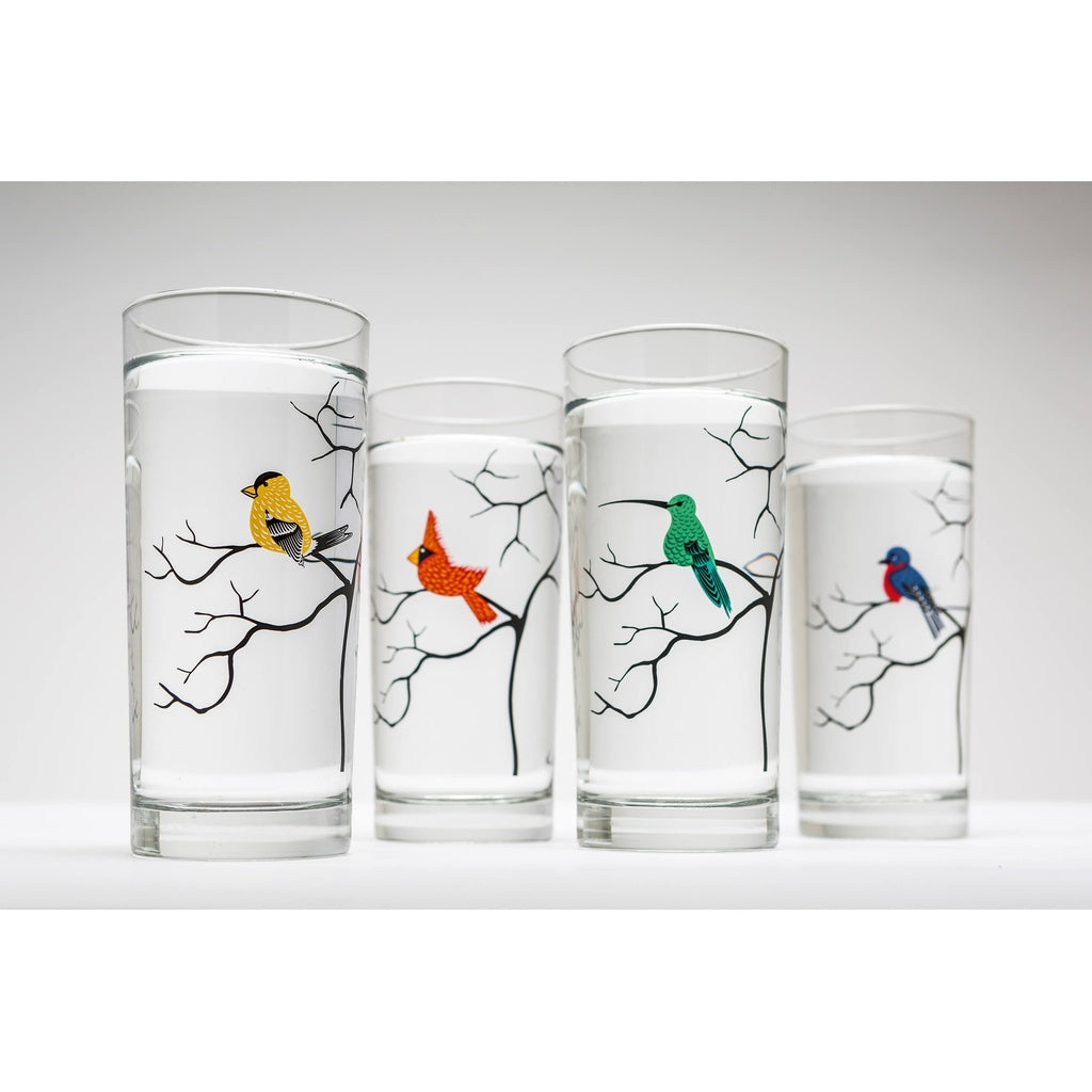 Colorful Birds Glassware - Set of 4 Everyday Water Glasses - 5and15