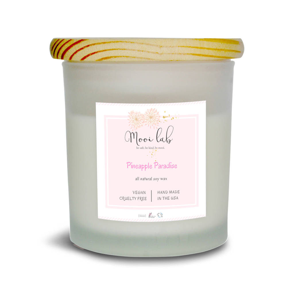 Pineapple Paradise Soy Candle - 5and15