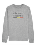 Sweater allemaal ensemble (man)