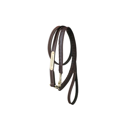 Leather covered chain lead