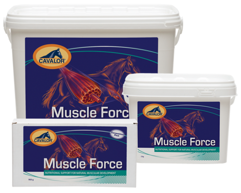 Cavalor: Muscle Force