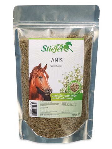 Stiefel: Anis