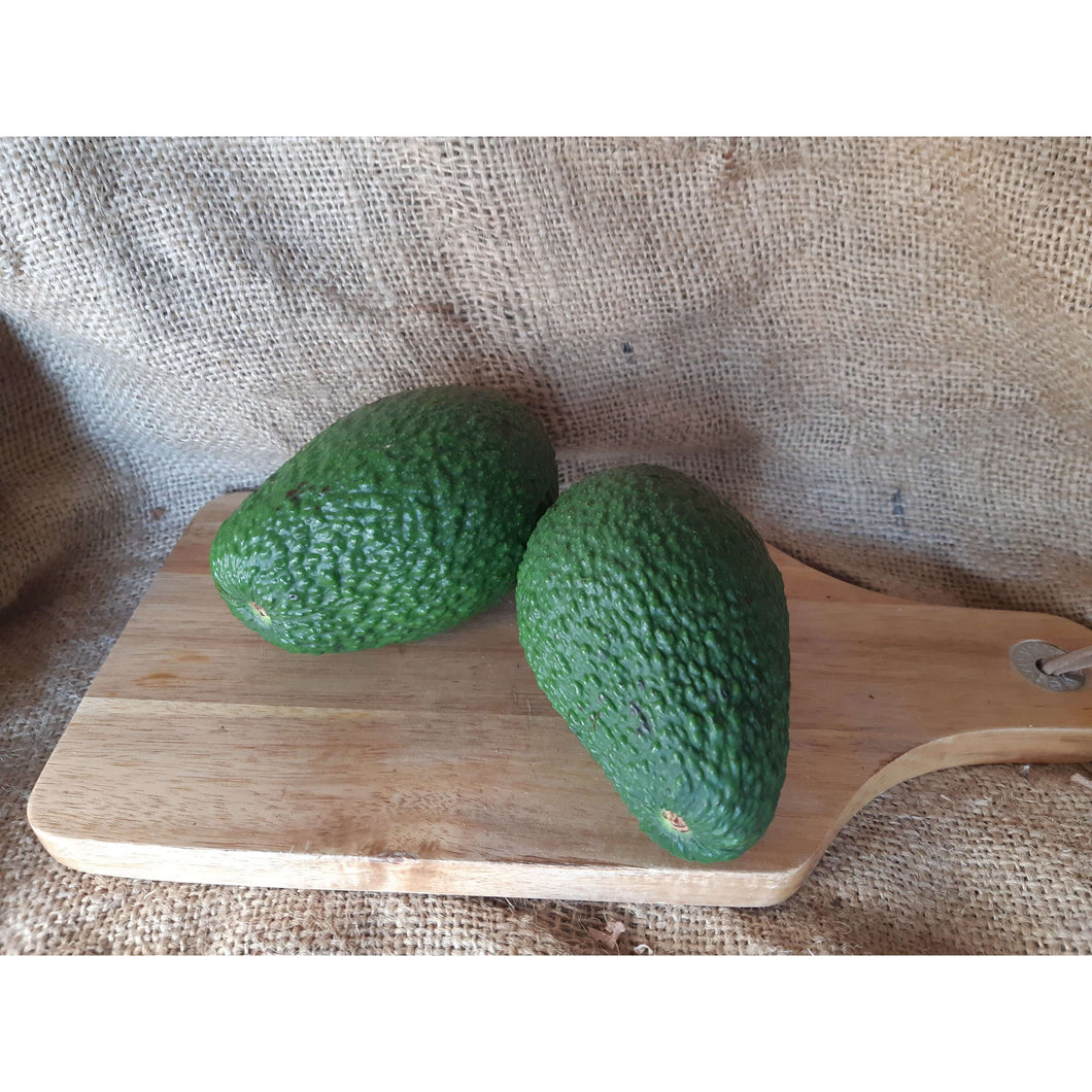 Avocado (Hass, regular, Green) - Bio-dynamic
