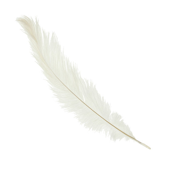 Ostrich Feathers Medium White