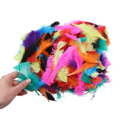 Assorted Coloured Feathers 50g