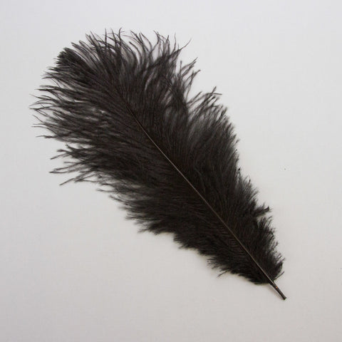 Small Ostrich Feather Black