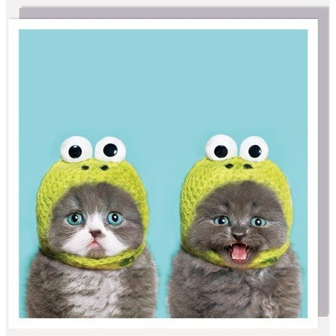 1000 Words Card Frog Cats