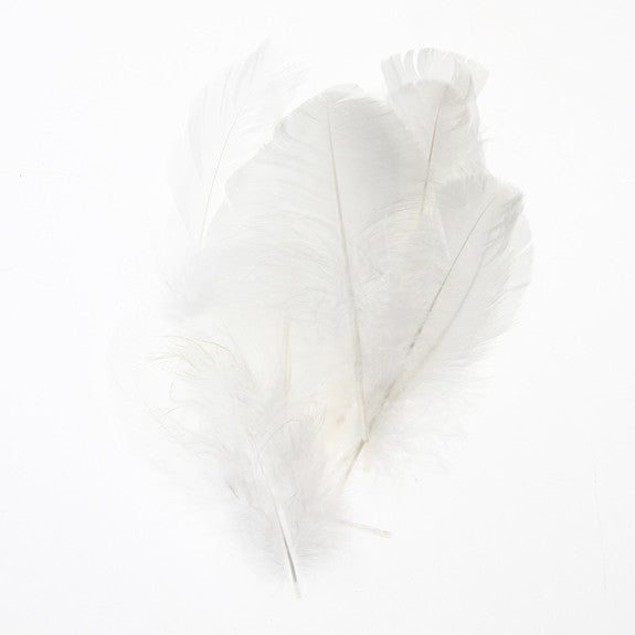 Feather Leaves Nat White12 Pk