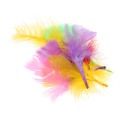 Coloured Feathers - 14g