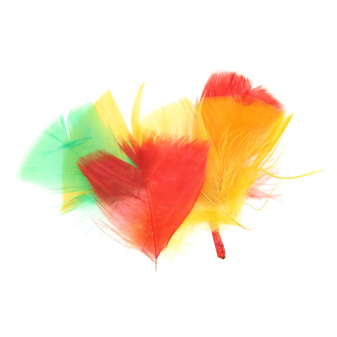 Coloured Feathers - Assorted Colours 28g