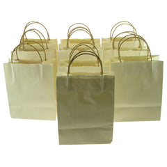 Handmade Recycled Paper Bags. 10 pack White
