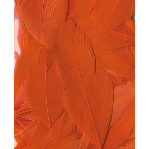 Artemio Feathers 3g Orange