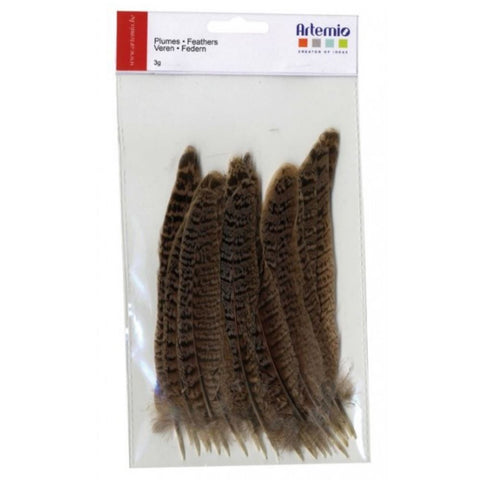 Artemio Feathers Natural 24Pcs