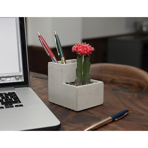 Planter And Pen Holder Small