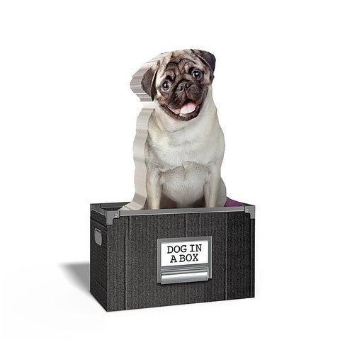 Dog in a Box Dog Shaped Sticky Notes (150 sheets)