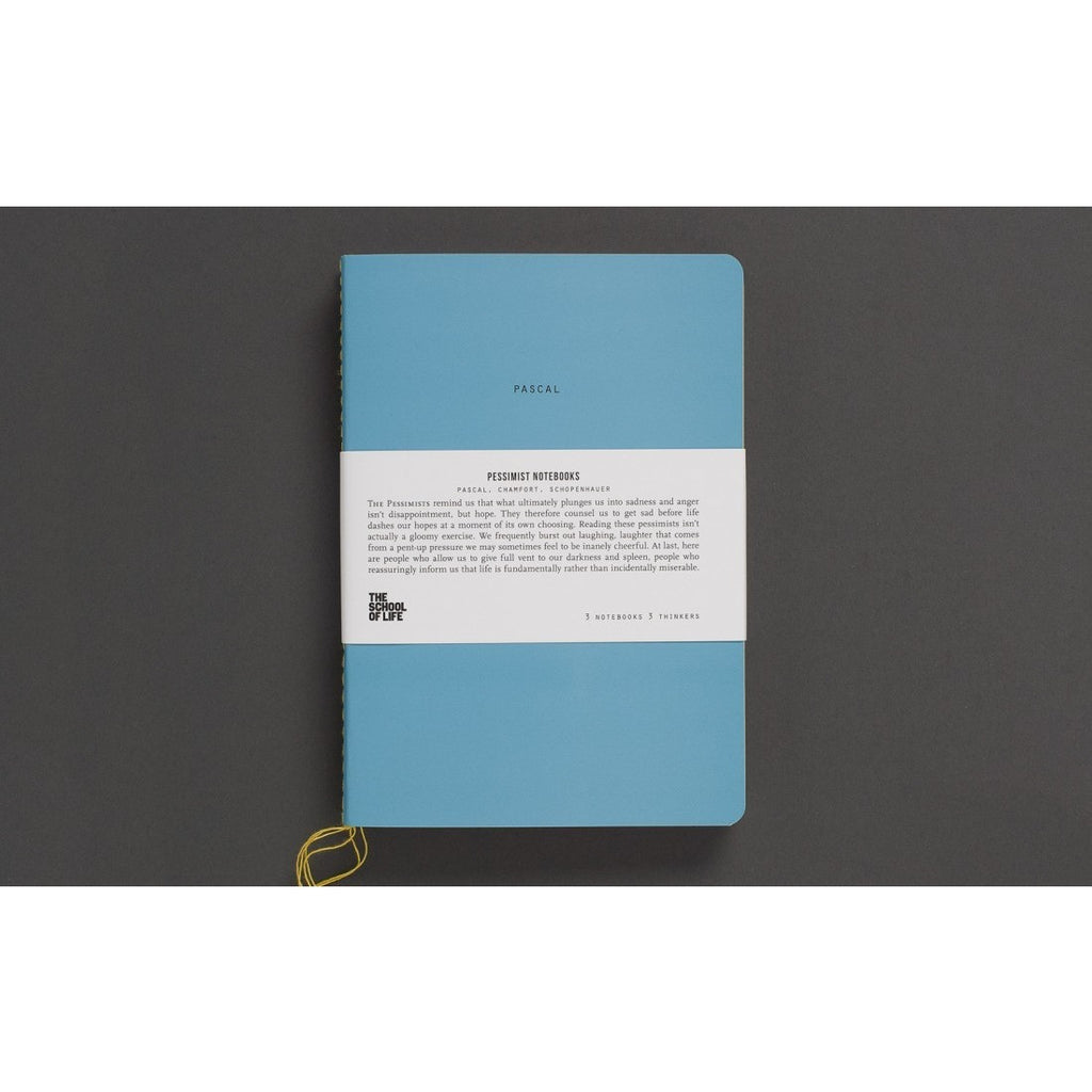 School of Thought Notebooks: The Pessimists