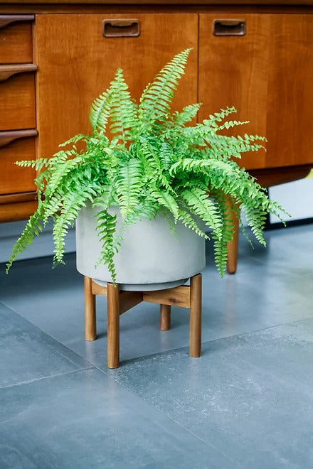 Vigo Concrete Grey Planter With Stand