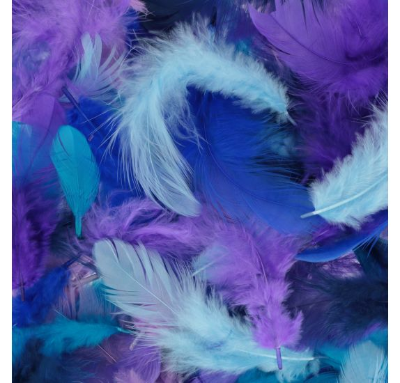 Mixed Coloured Feathers 10G