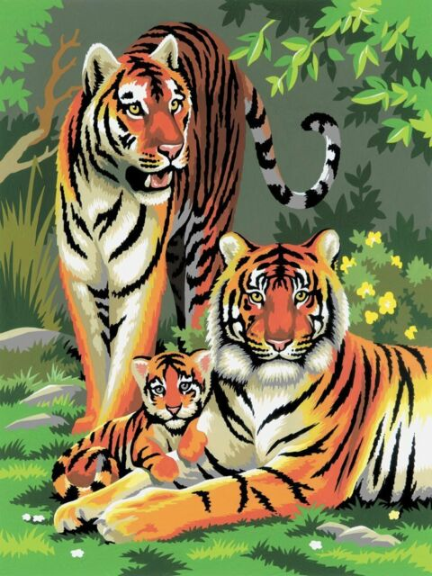 Paint By Numbers Junior Small/Tigers