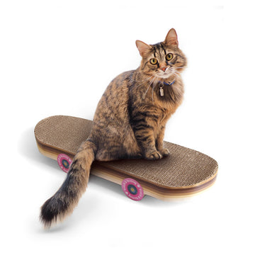 Cat Scratch Skateboard