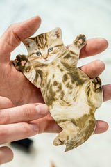 Cat Nail File - Designs Vary