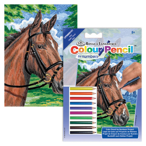 Colour Pencil By Numbers Mini - Horses